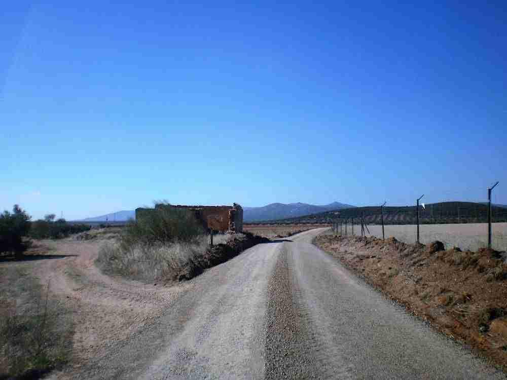 Acondicionados 11 kilómetros de caminos rurales en Herencia 3