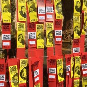Fotogalería de Mensajes de solidaridad en Valdepeñas para el año nuevo chino 7