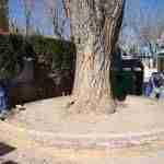 Quintanar de la Orden realiza mejoras y adecenta los Parques Infantiles de la localidad 5