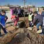 Día Forestal Mundial plantando árboles en la vía verde en Argamasilla de Alba 5