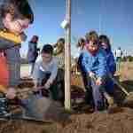 Día Forestal Mundial plantando árboles en la vía verde en Argamasilla de Alba 7