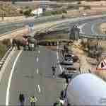 accidente a 30 elefantes 3 150x150 - Un accidente con elefantes en la Autovía A-30 en Albacete