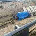 accidente a 30 elefantes 5 150x150 - Un accidente con elefantes en la Autovía A-30 en Albacete