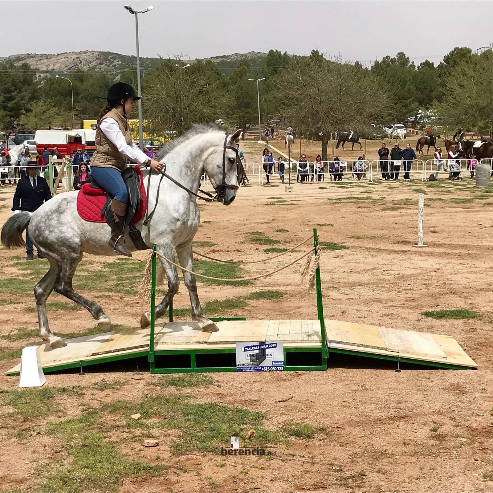 liga social equitacion 2018 herencia ciudad real 10 1