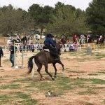 liga social equitacion 2018 herencia ciudad real 15 2