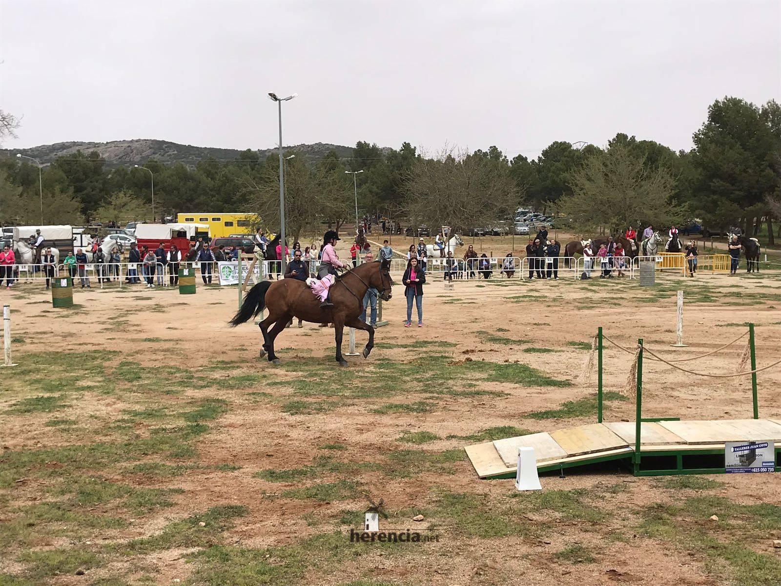 liga social equitacion 2018 herencia ciudad real 17 1