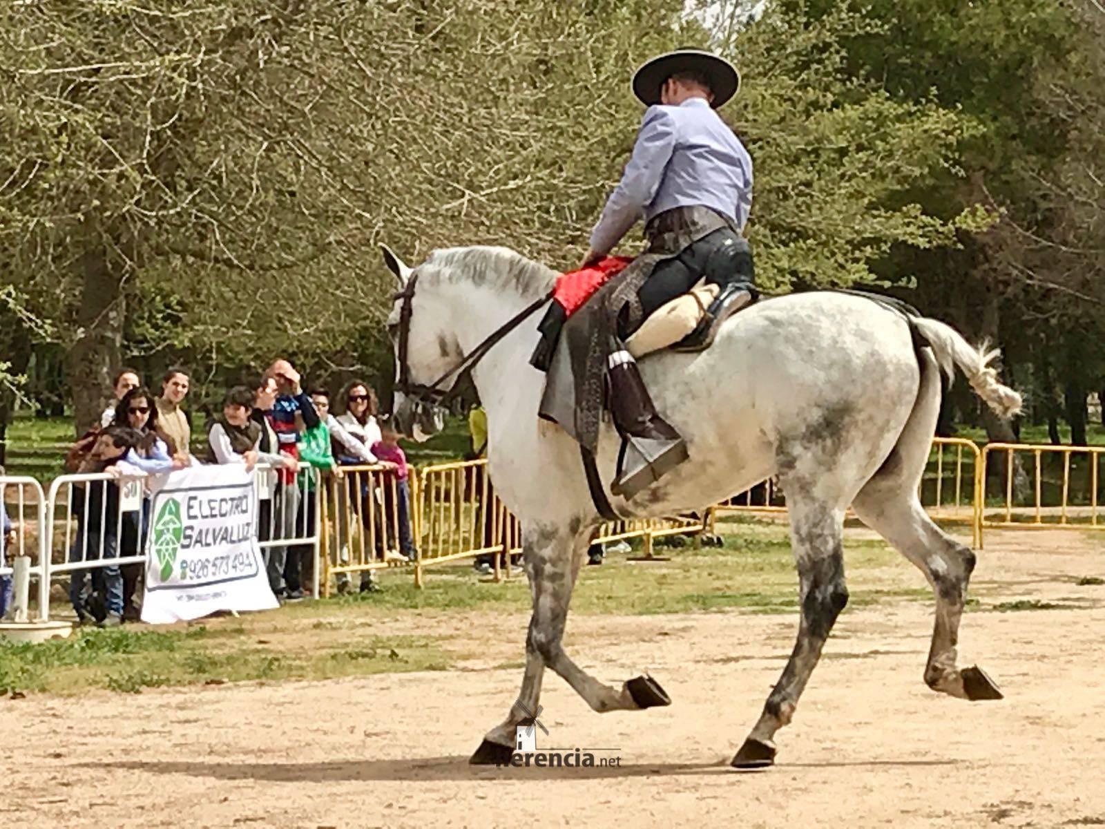 liga social equitacion 2018 herencia ciudad real 2 1