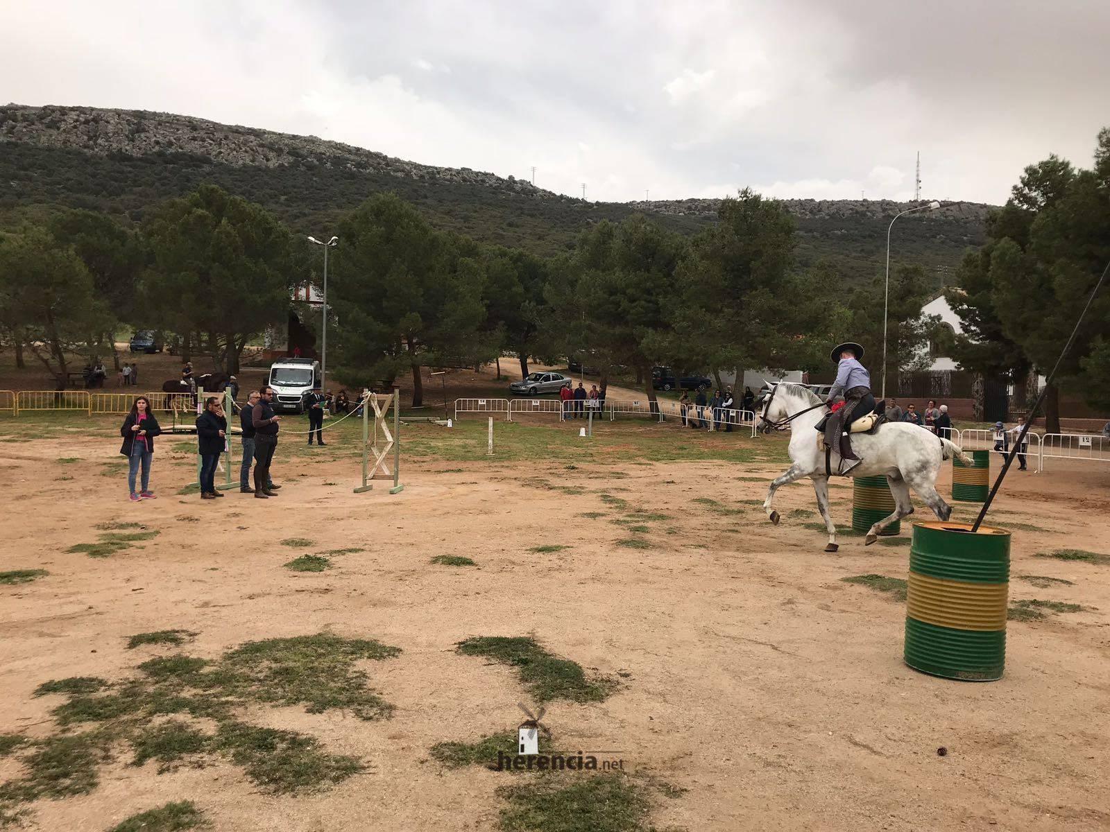 liga social equitacion 2018 herencia ciudad real 25 1
