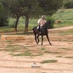 liga social equitacion 2018 herencia ciudad real 28 2
