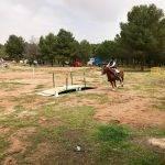 liga social equitacion 2018 herencia ciudad real 8 3