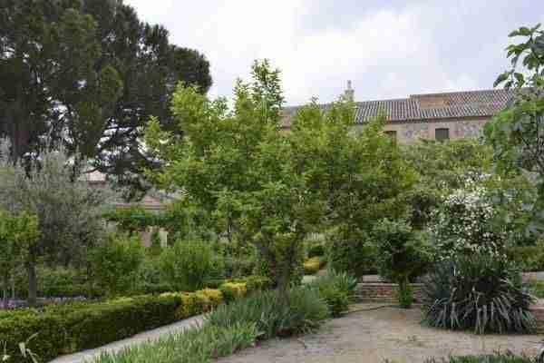 Patio y jardín fundación Sopeña 2