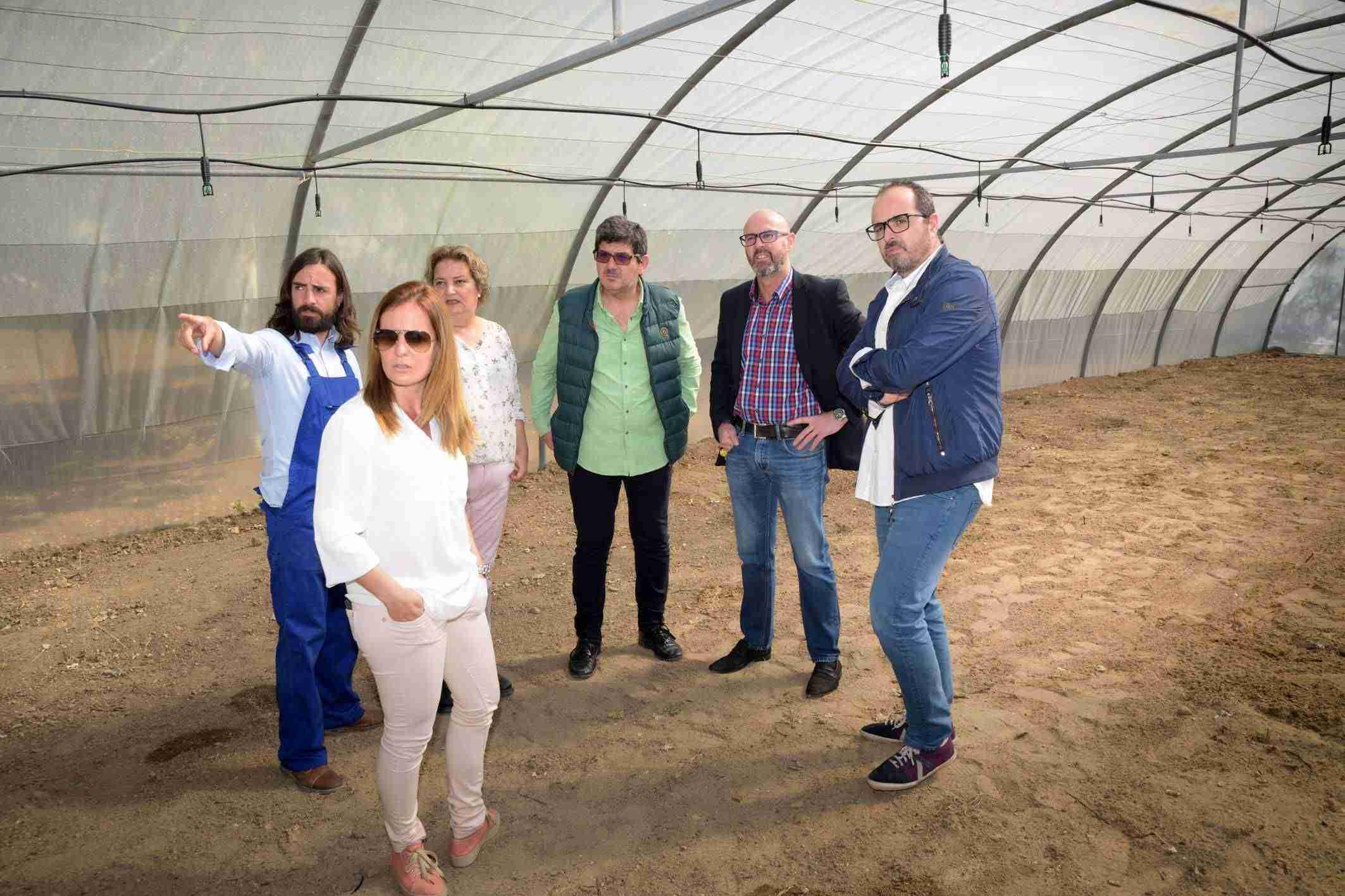 El alumnado de agro-jardinería del IES Vicente Cano utilizará el invernadero cedido por el Ayuntamiento de Argamasilla 3