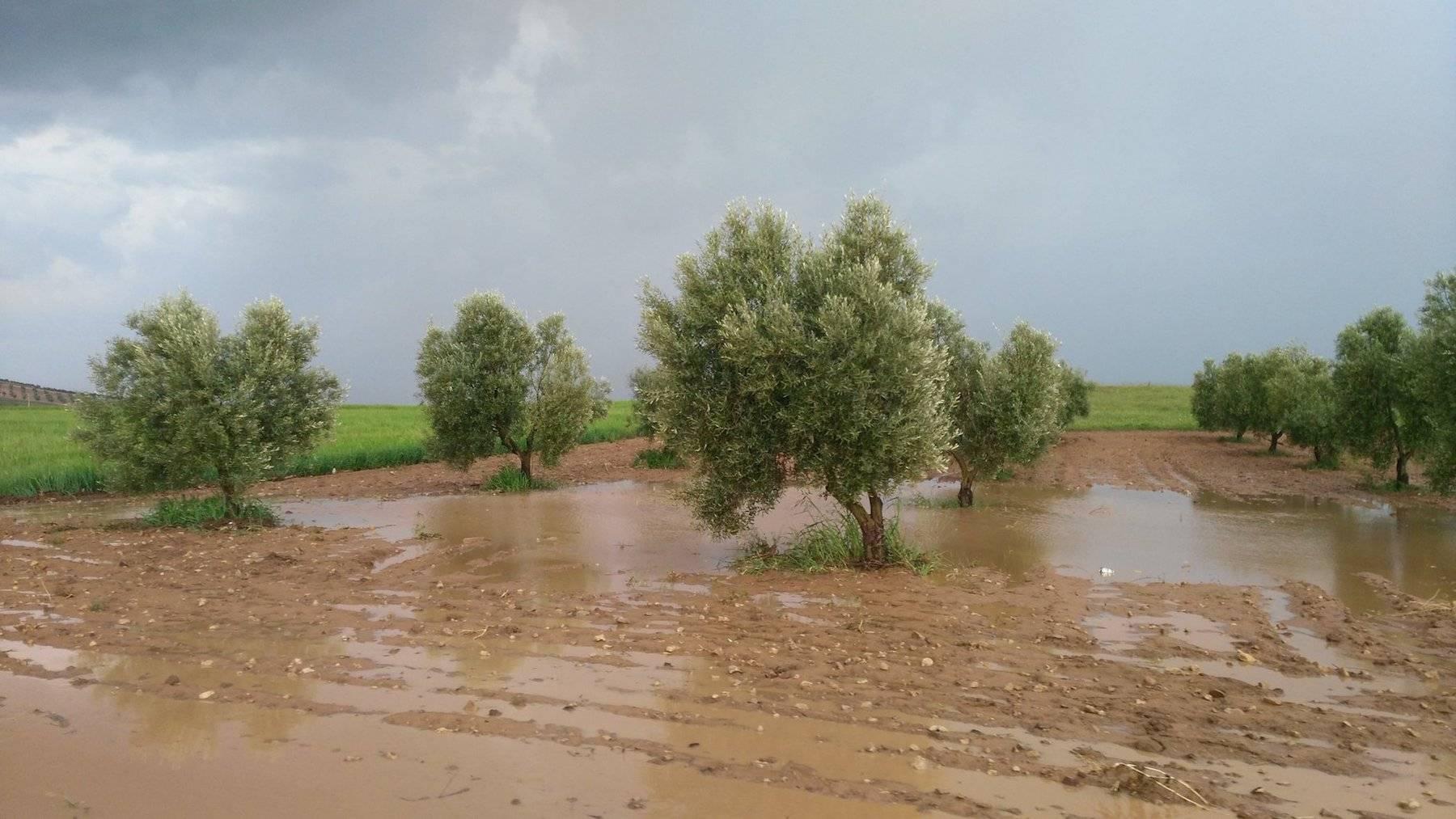tromba agua herencia carreteras afectadas 2 1