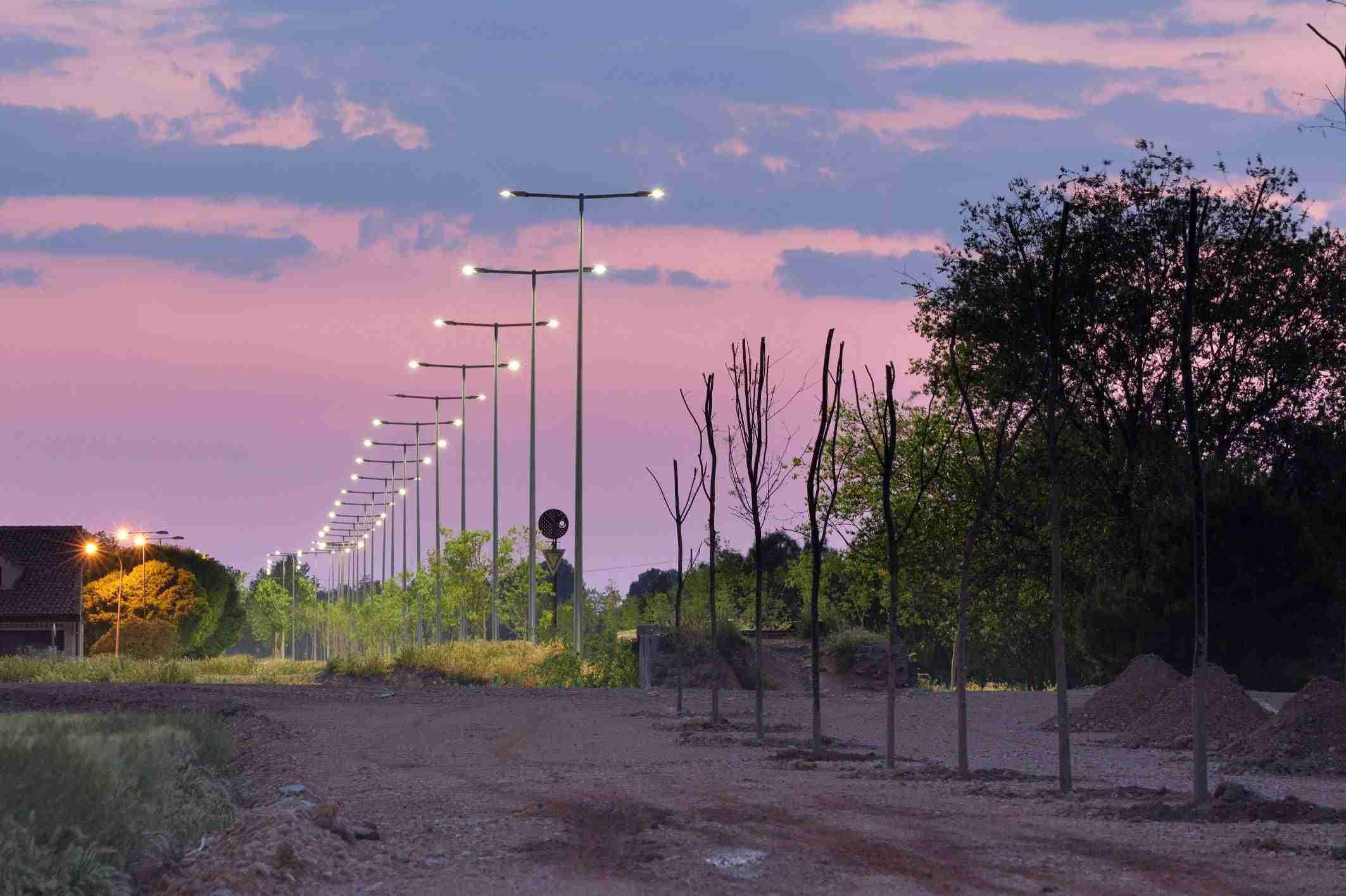 Más de doscientos árboles plantados esta primavera en Argamasilla de Alba 2