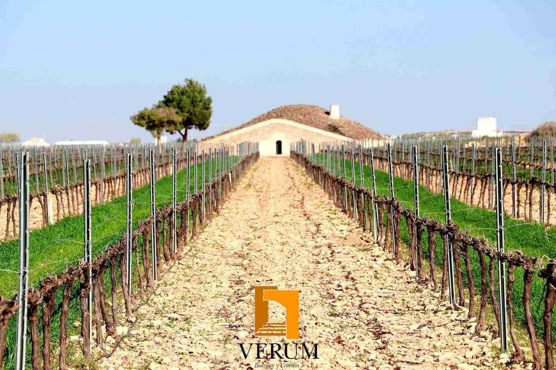 Bodegas Verum representa a Castilla La Mancha en el IX simposio de Master of Wine 1