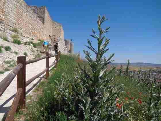 Tras las huellas del Cid Campeador, mito y realidad 21