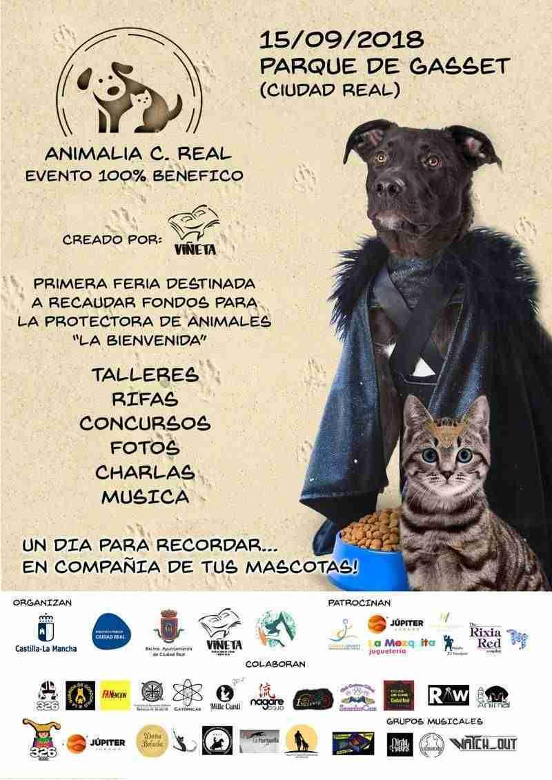 Animalia Ciudad Real