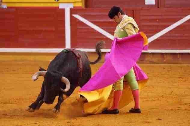 Música y toros, protagonistas en la recta final de las fiestas de Illescas 5