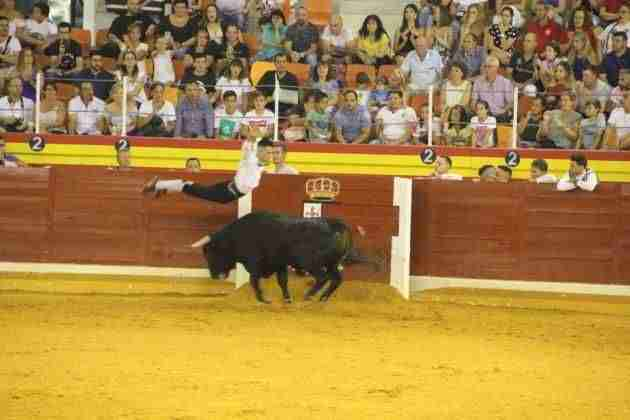 Música y toros, protagonistas en la recta final de las fiestas de Illescas 4