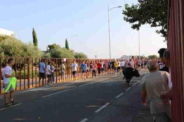 Música y toros, protagonistas en la recta final de las fiestas de Illescas 3