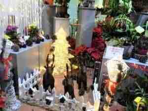 Éxito de participación en el concurso de escaparates organizado por la concejalía de festejos de Quintanar de la Orden 1