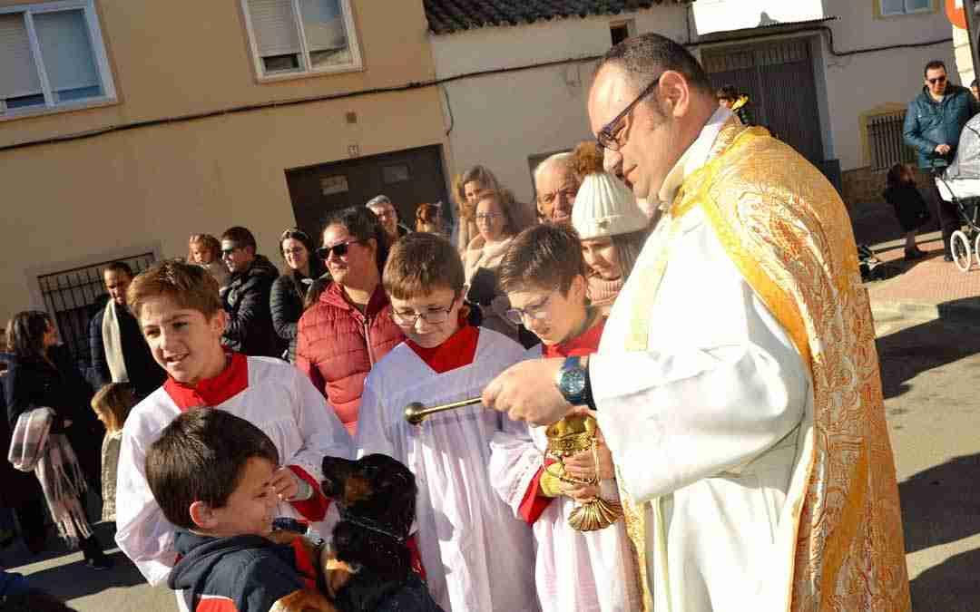 Gran participación en las fiestas de San Antón de Quintanar de la Orden 4