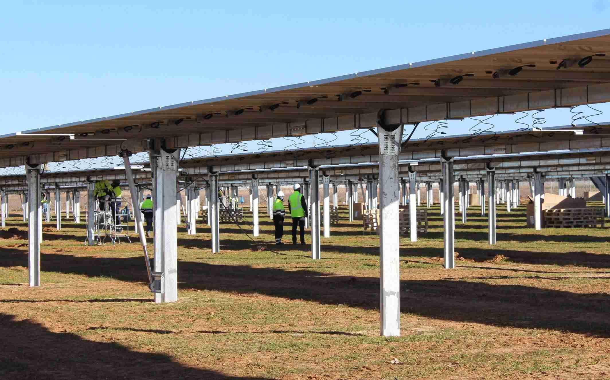 Las empresas fotovoltaicas ven en Castilla-La Mancha un lugar idóneo para su desarrollo 3