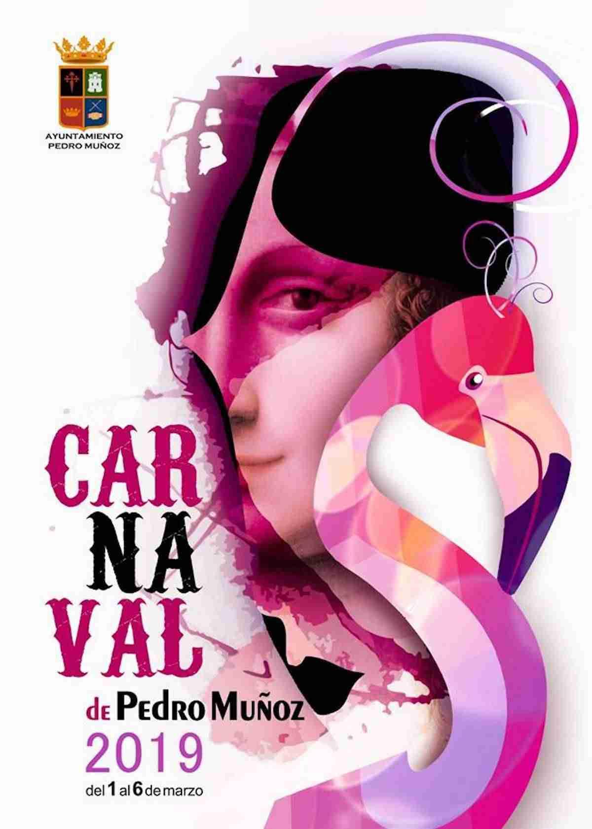 Francisco García gana el concurso del Cartel de Carnaval de Pedro Muñoz 2019 3