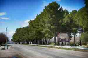 El ministerio de Industria, Comercio y Turismo incluye a Argamasilla de Alba en el Catálogo SISTHO 2
