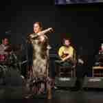 """Julián Estrada y El Troya en el VII Festival Flamenco """"Primavera del Cante"""" de Argamasilla de Alba 9"""