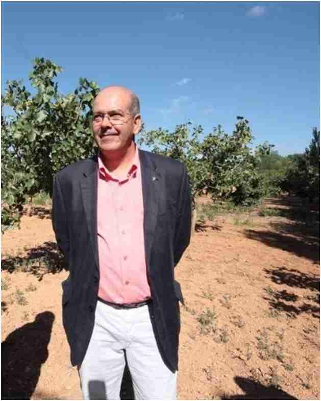 Profesionales analizan en FENAVIN la importancia del sector vitivinícola para mantener población en el territorio 1