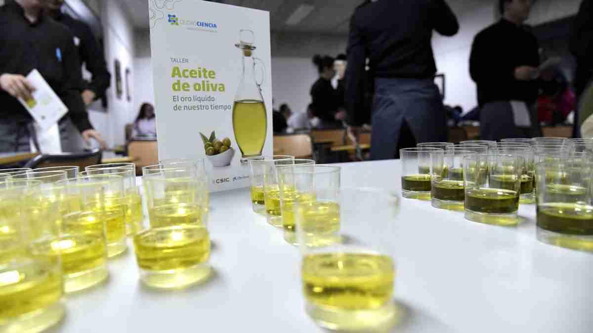 Villarrubia de los Ojos y un taller-cata sobre aceite de oliva y charla sobre el suelo en mayo 2