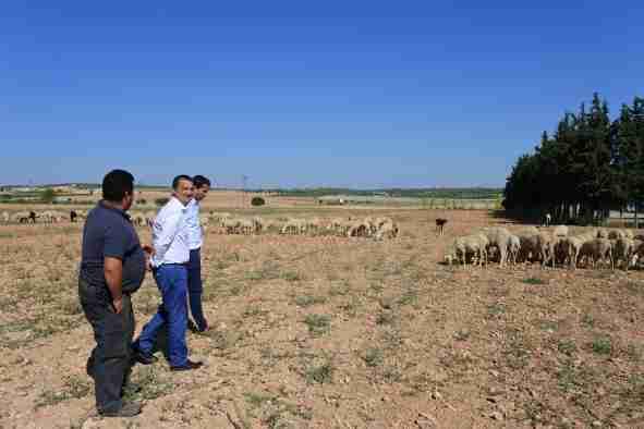 El Gobierno regional abonó 6,7 millones de planes de mejoras para las explotaciones de 200 profesionales de la agricultura y la ganadería 1