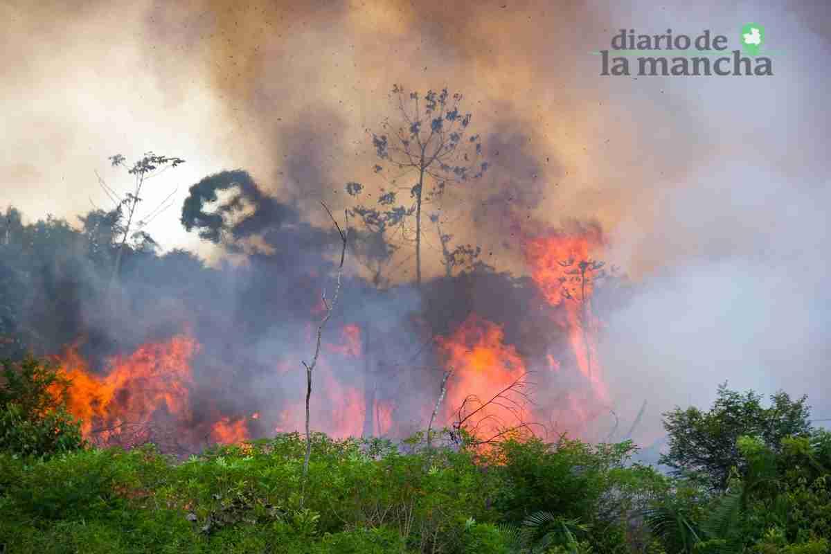 Realmente la Amazonia lleva ardiendo más de 15 años 1