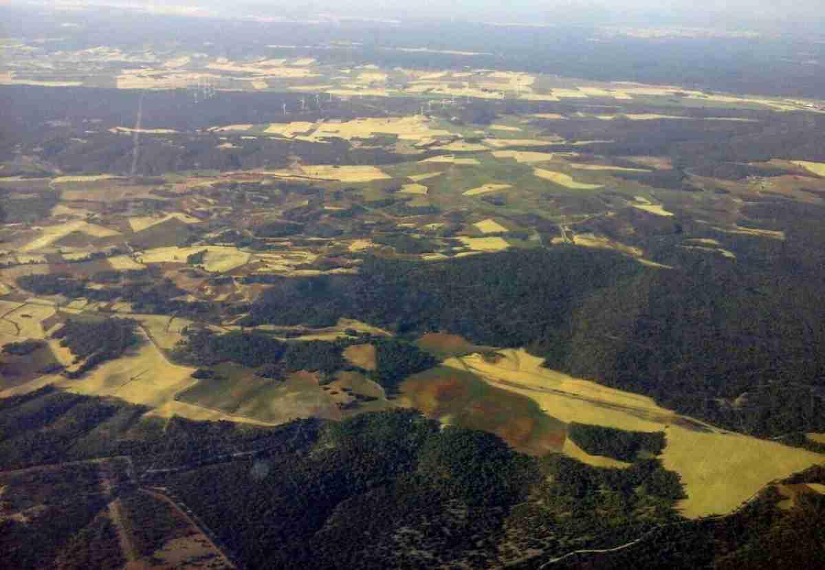 Extinguido el incendio forestal de Barchín del Hoyo (Cuenca) detectado en la tarde del pasado 30 de julio 1