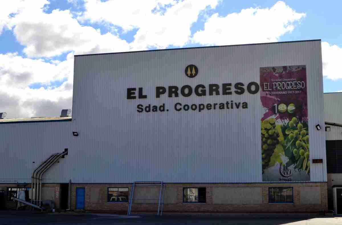 A mediados de la próxima semana Cooperativa El Progreso de Villarrubia de los Ojos iniciará la vendimia 2