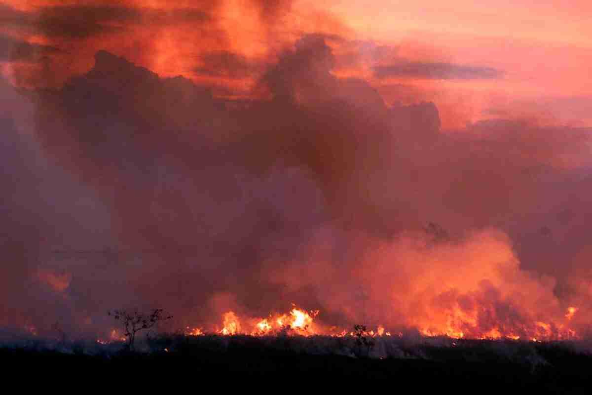 La NASA muestra los incendios del Amazonas desde el espacio 3