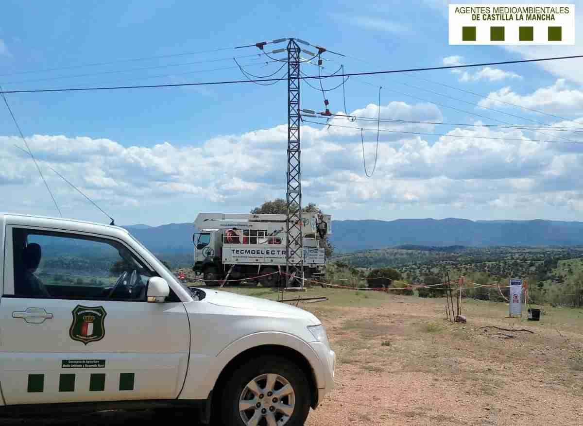 Pozuelo (Albacete) se ha convertido en el primer municipio libre de tendidos eléctricos peligrosos 1