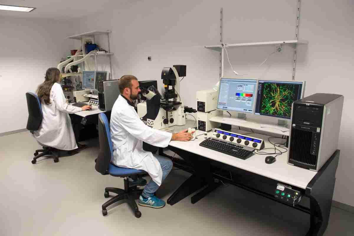 curso_de_microscopia_y_analisis_de_imagen