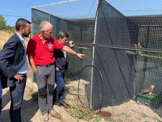 El Gobierno regional mostró su apoyo a la recuperación de fauna silvestre en la región 1