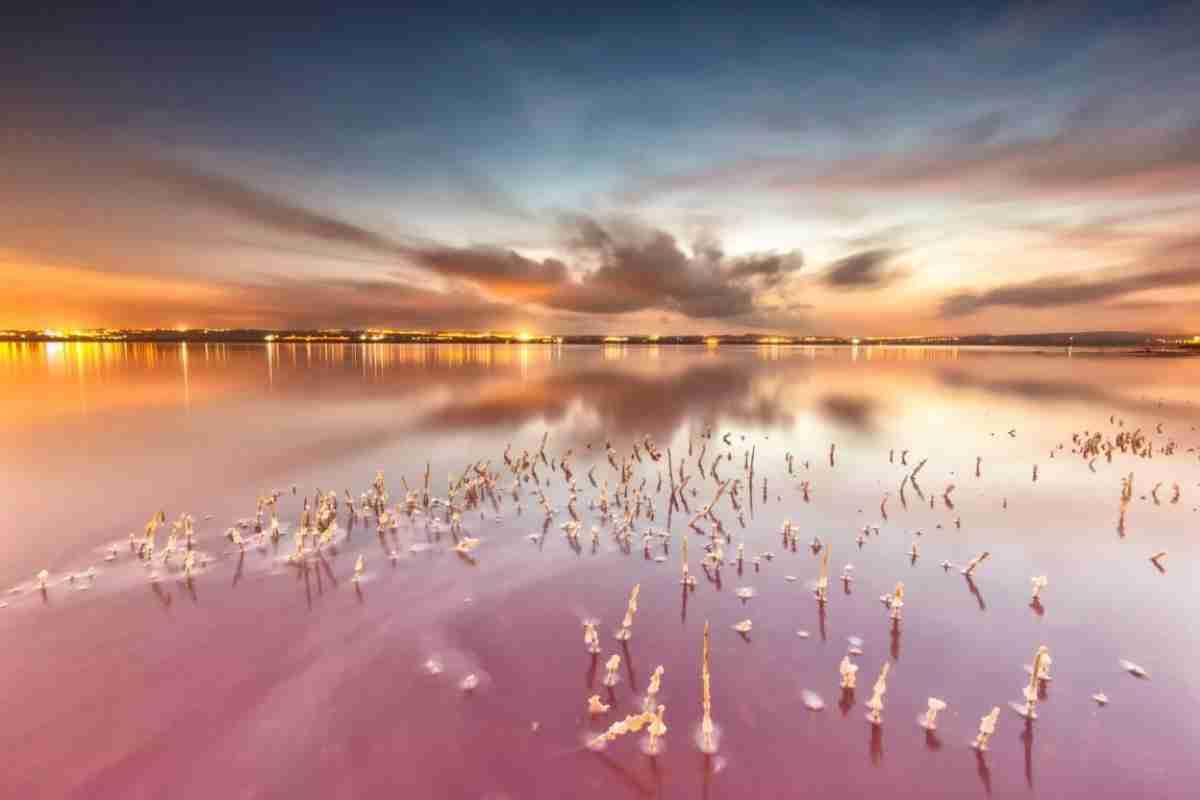 2 premio concurso de fotografia dia mundial de los humedales