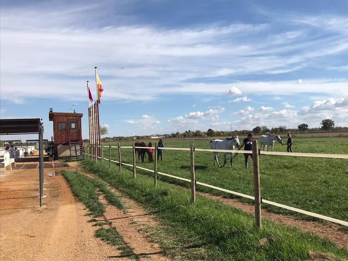 El Campeón de España en Concurso Completo de Equitación será elegido este fin de semana en Tomelloso 1