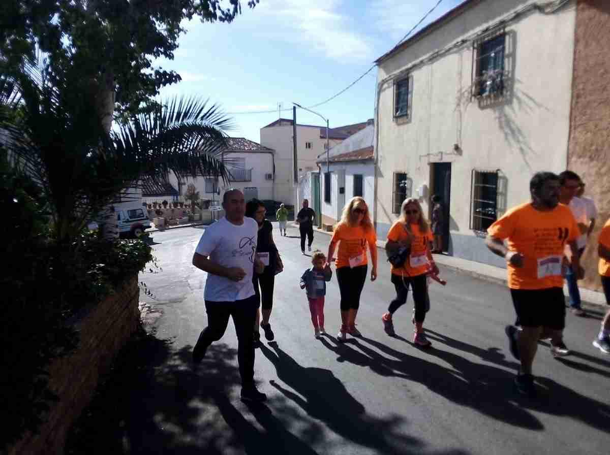 El Gobierno apoya el II encuentro 'Todos somos Campo de Montiel'y la importancia del olivar en la pervivencia del medio rural 1