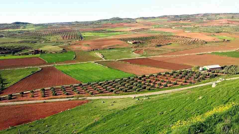 Los municipios del Campo de Montiel presentarán en FITUR su calendario anual de eventos turísticos 2