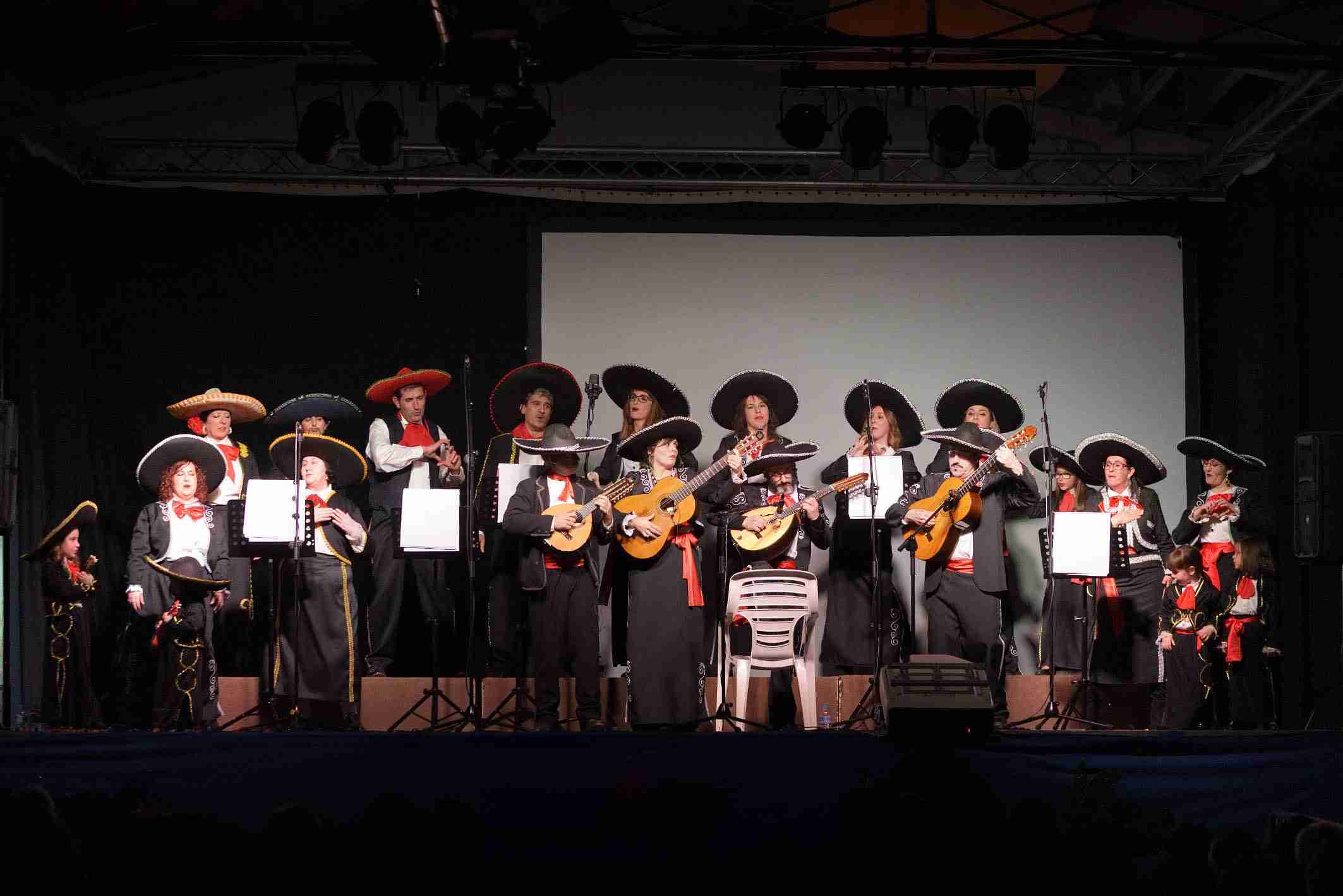 Inaugurado el Carnaval 2020 de Argamasilla de Alba 21