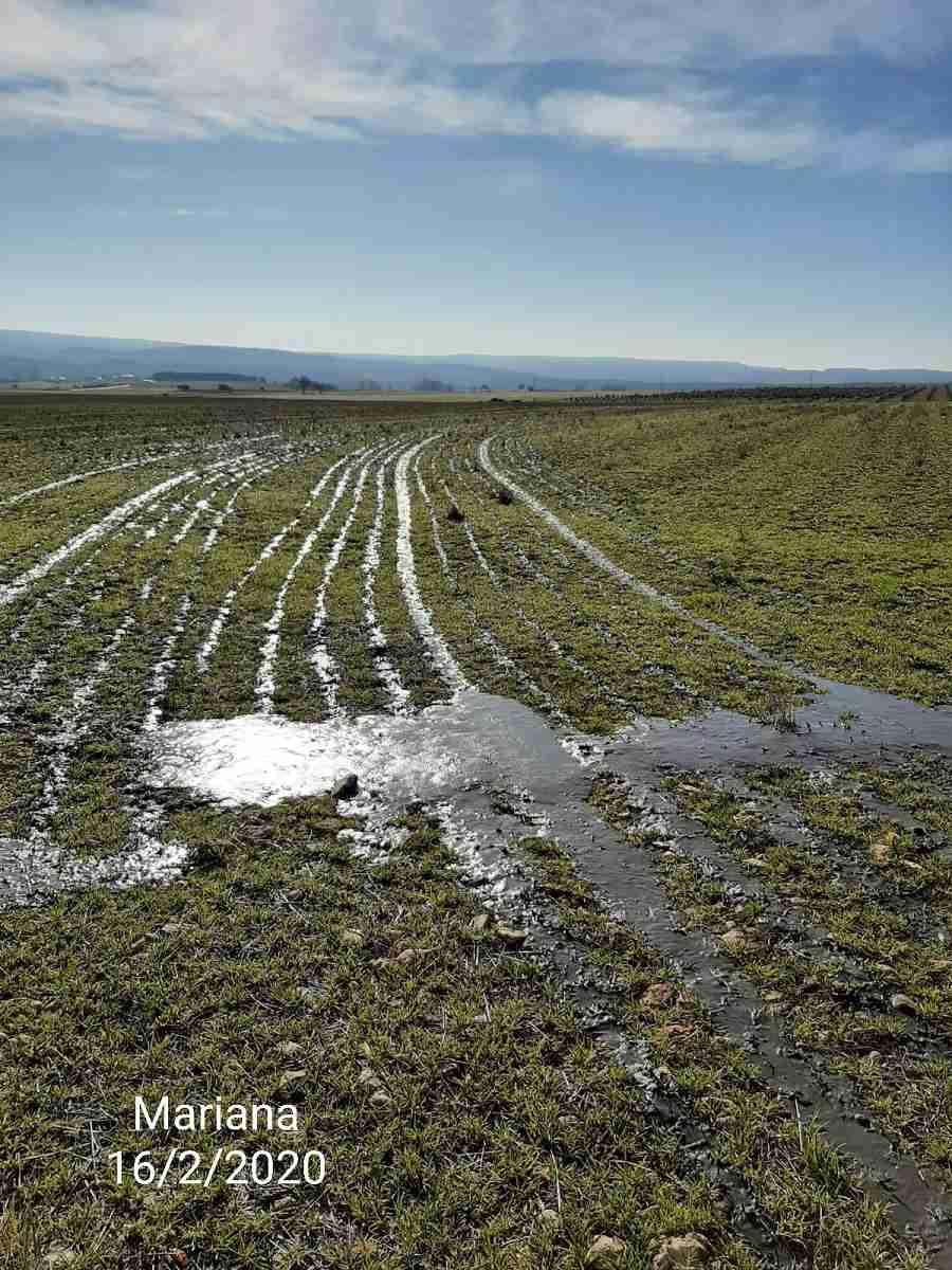 Los pueblos de Cuenca sufren contaminación ambiental y el malestar vecinal se acrecenta 9