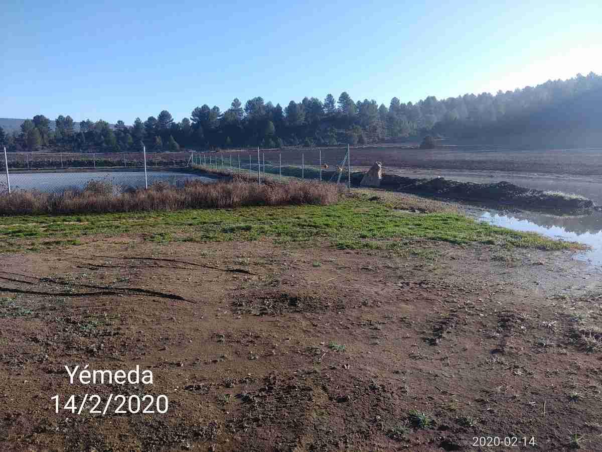 Los pueblos de Cuenca sufren contaminación ambiental y el malestar vecinal se acrecenta 11