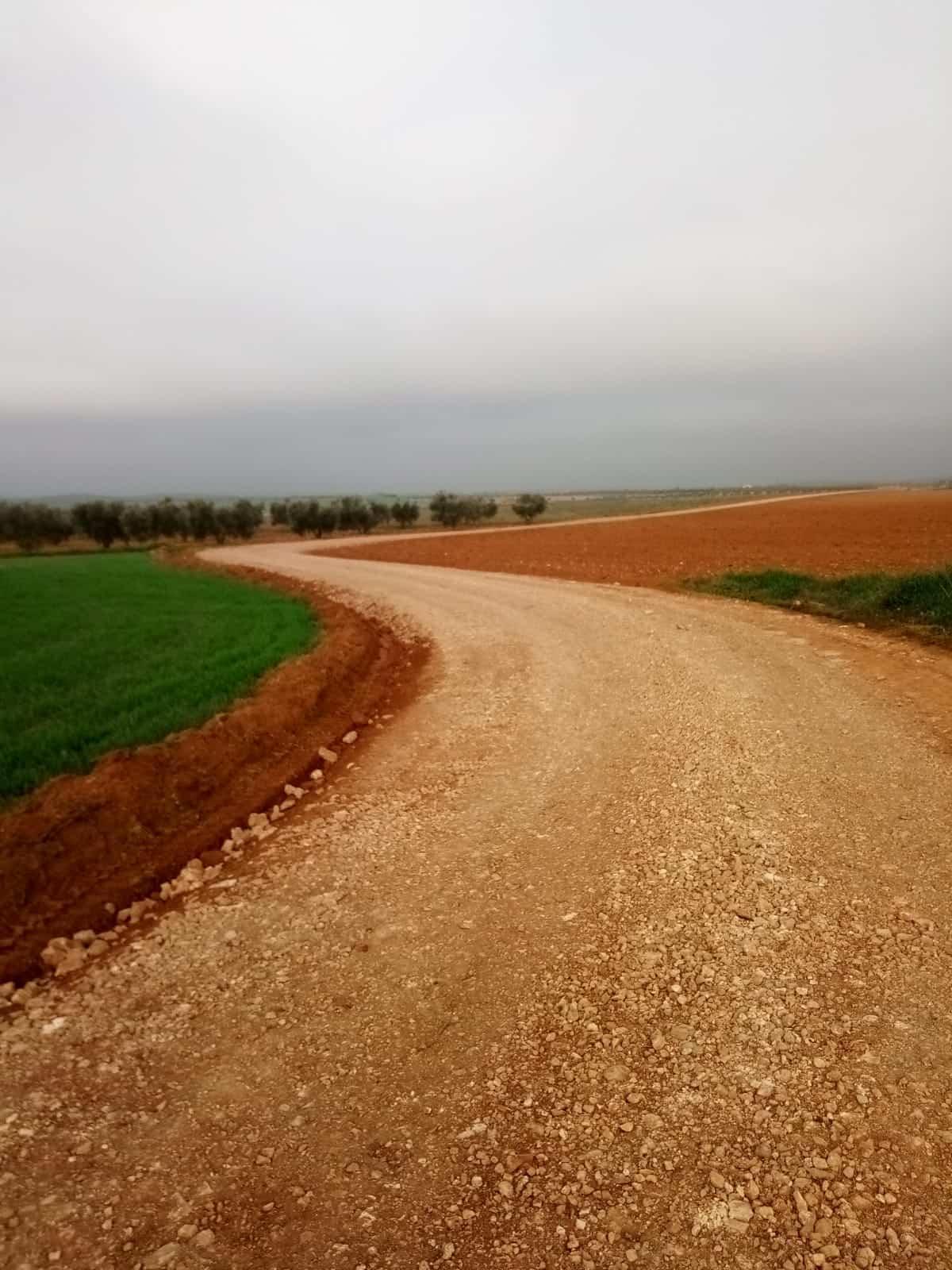 Se arreglaron 16 kilómetros de caminos rurales en Torralba de Calatrava 1