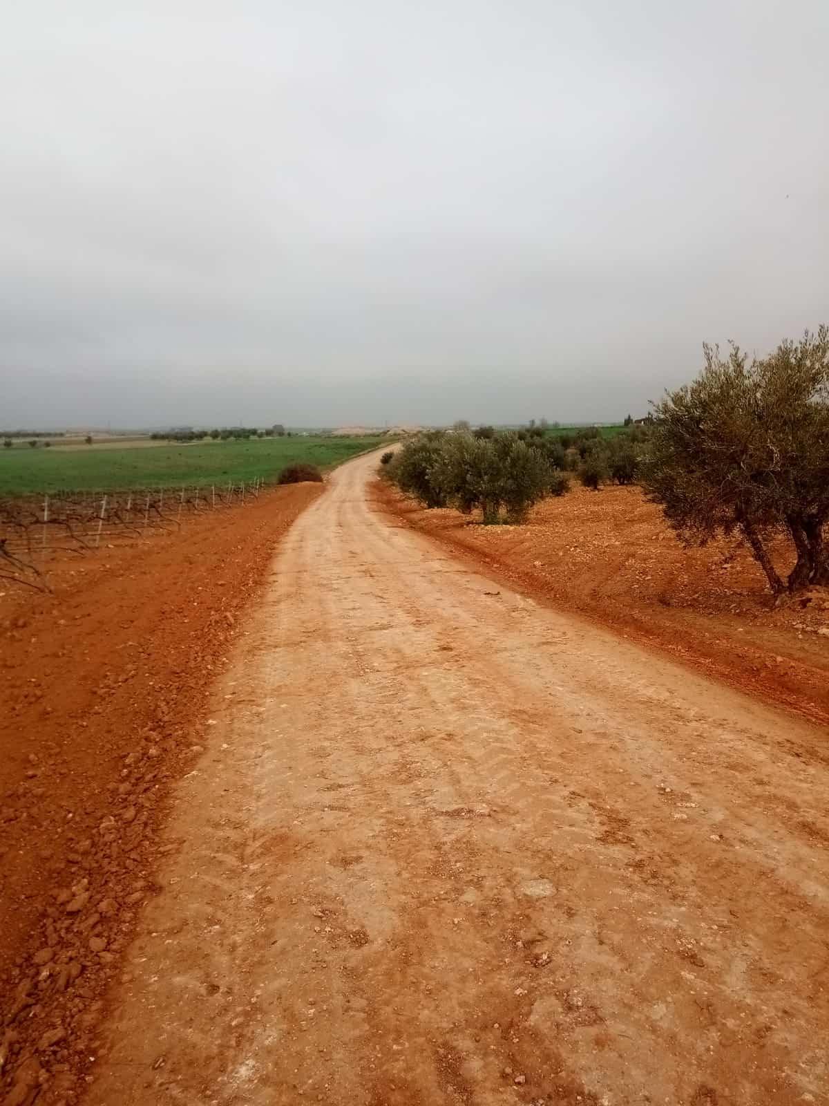 Se arreglaron 16 kilómetros de caminos rurales en Torralba de Calatrava 2