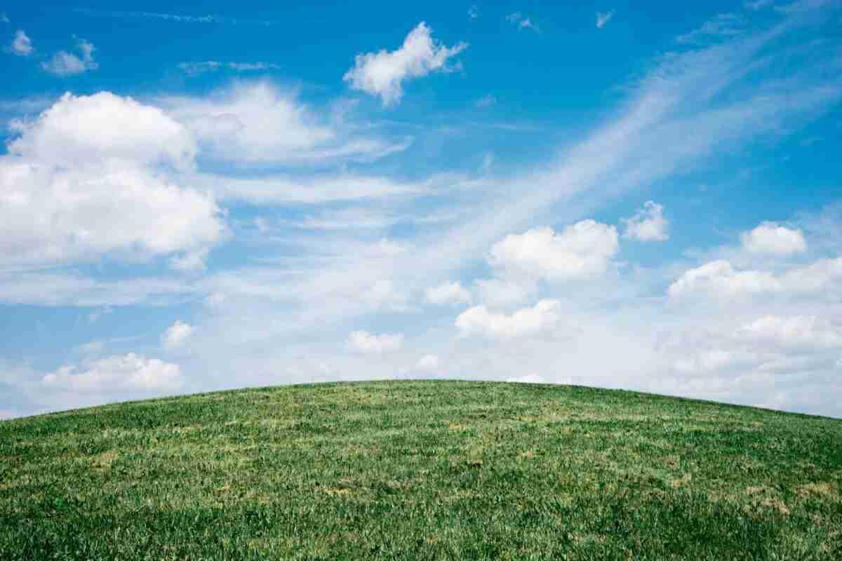 Ecologistas en Acción presentó el informe estatal de calidad del aire 2019 para Castilla-La Mancha 1
